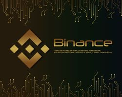Binance Coin (BNB): scambiare criptomonete a bassi costi