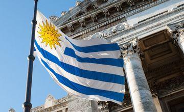 In Uruguay startet das erste Blockchain-Netzwerk weltweit, das die Nachverfolgung medizinischen Cannabis ermöglicht